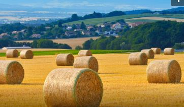 Working Safely with Bales