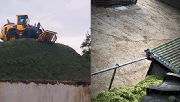 Silage Pit Safety Concerns